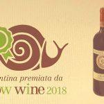 slow-wine-2018.jpg